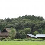 今注目の土地活用、野立て太陽光発電とは?