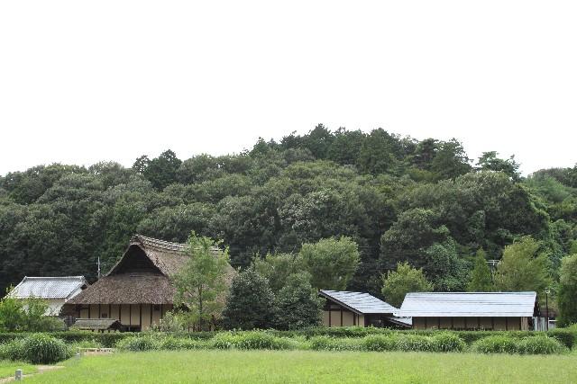 田舎の土地
