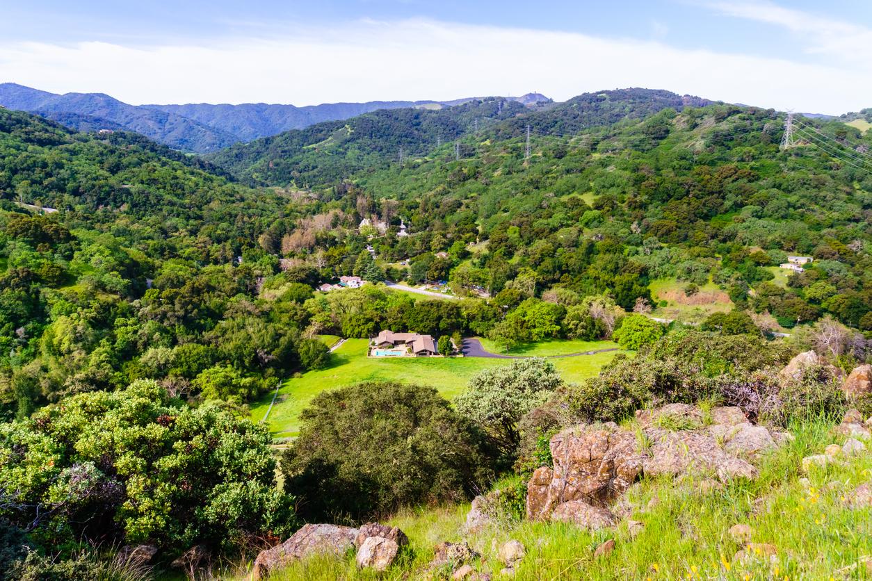 山林固定資産税