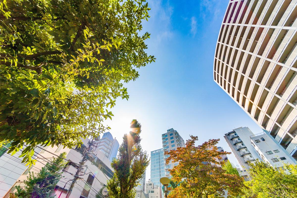 第一種中高層住居専用地域の特徴と土地活用の考え方